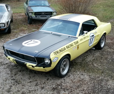 1967 Ford Mustang - Shelby Terlingua - Bandelier Mustang